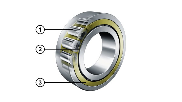 Cylindrical roller bearings with optimized rib contact